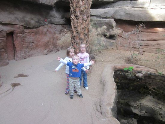 Henry Doorly Zoo: Along a path in the Desert Dome