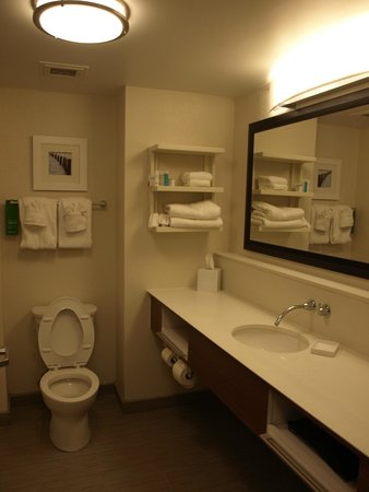 Hampton Inn Cocoa Beach/Cape Canaveral : Bathroom