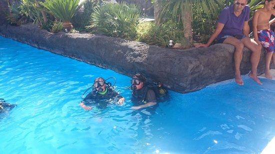 Hotel Papi: scuba diving on Monday morning