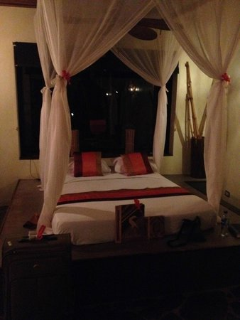 Canaima Chill House: Bed with mosquito net