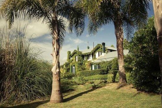 La Casa de los Limoneros: Jardin pileta