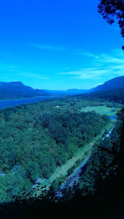 Columbia River Gorge National Scenic Area : one of many viewing spots