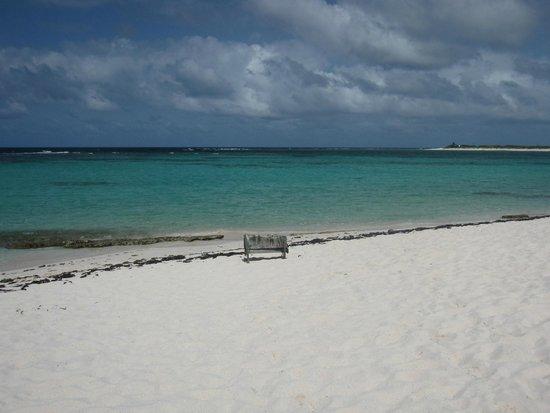 Anegada Island: Loblolly Bay