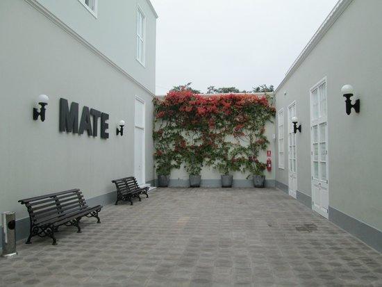 Mate Museo Mario Testino: MATE