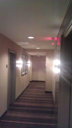 Fairfield Inn & Suites Milwaukee Downtown: an old world charmed hallway