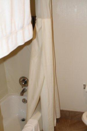The Loyal Inn : bath