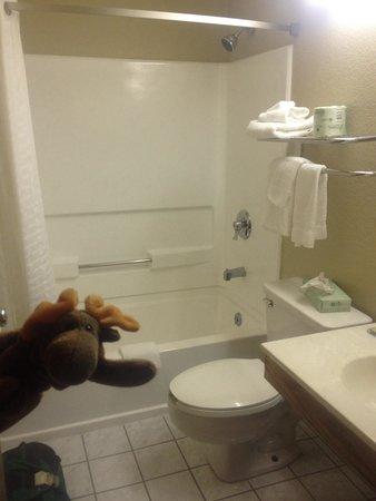 Super 8 Dunbar/Charleston Area : Room 206 bathroom