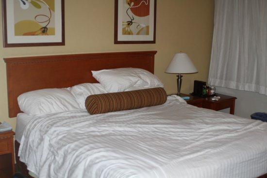 The Loyal Inn : bed