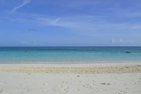 Ports of Call Resort: Amazing Beach