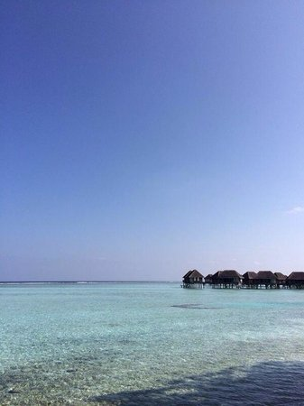 Club Med Kani : Haven����