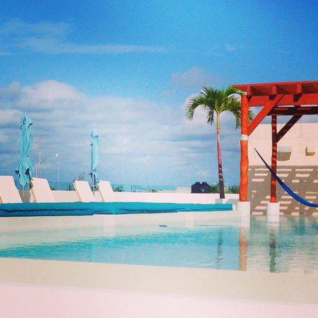 The Palm at Playa: Pool