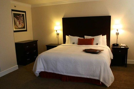 Hampton Inn & Suites Stamford: King Standard