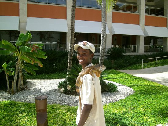Barcelo Bavaro Palace : This man offered to take your picture with an aguana on your shoulder