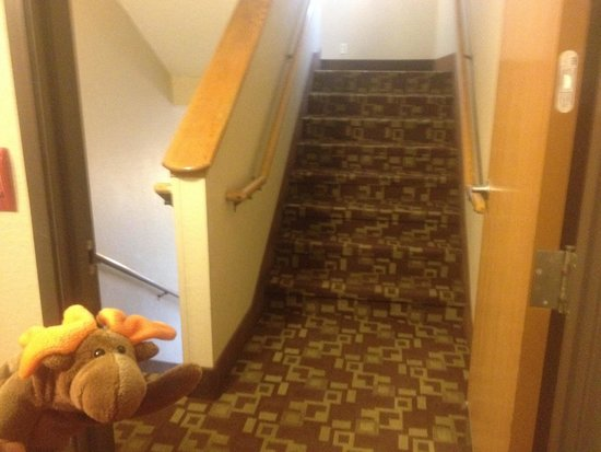 Super 8 By Wyndham Dunbar/Charleston Area: Split Level Stairs, Down Goes To
