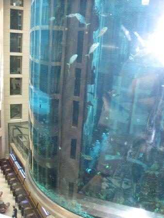 Radisson Blu Hotel, Berlin: THe fish tank in the lobby