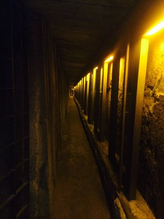 The Western Wall Tunnels : It's the closest to the Holy of Holies that I've ever been!