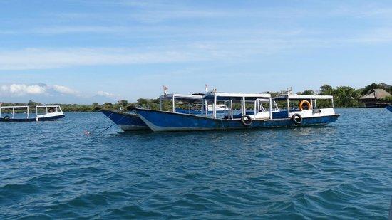Ocean Dreams Pemuteran: départ des bateaux pour Menjangan