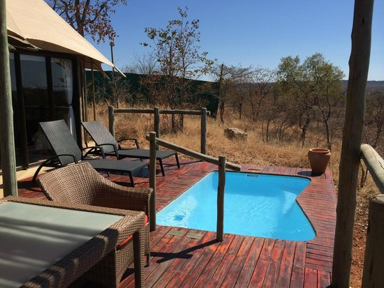 The Elephant Camp: Gorgeous private deck
