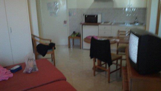 Artemis Hotel Apartments: Room
