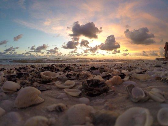 JW Marriott Marco Island Beach Resort: Sunset