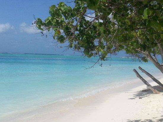 Meeru Island Resort & Spa: vue de la plage