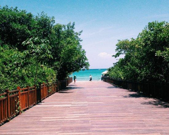 Paradisus Playa del Carmen La Perla: Acceso a la playa a través del manglar