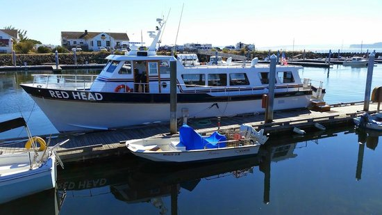 Puget Sound Express - Day Trips : Our boat for the day