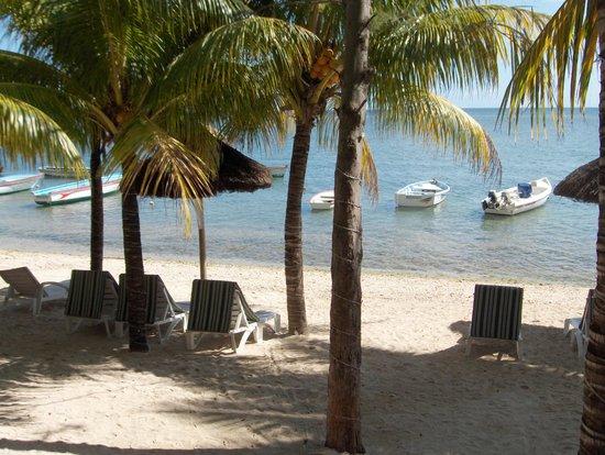 Cocotiers Seaside Boutik Hotel: la plage devant l'hôtel