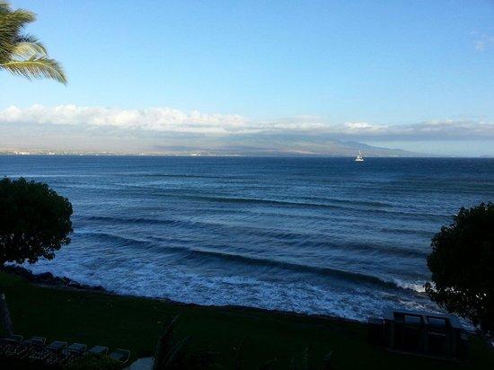 Milowai: Views all day long