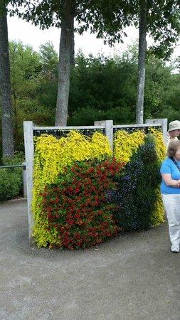 Coastal Maine Botanical Gardens: Vertical gardens