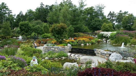 Coastal Maine Botanical Gardens : water garden
