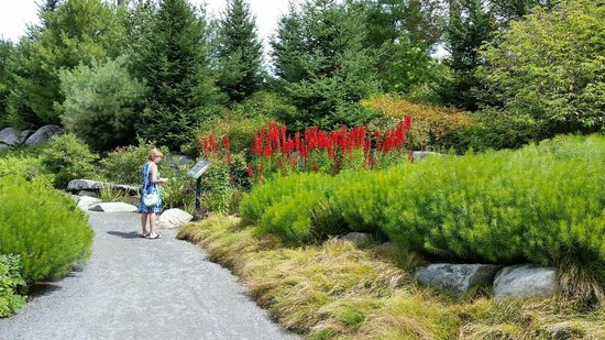 Coastal Maine Botanical Gardens : more gardens