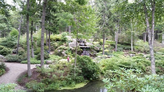 Coastal Maine Botanical Gardens : waterfall