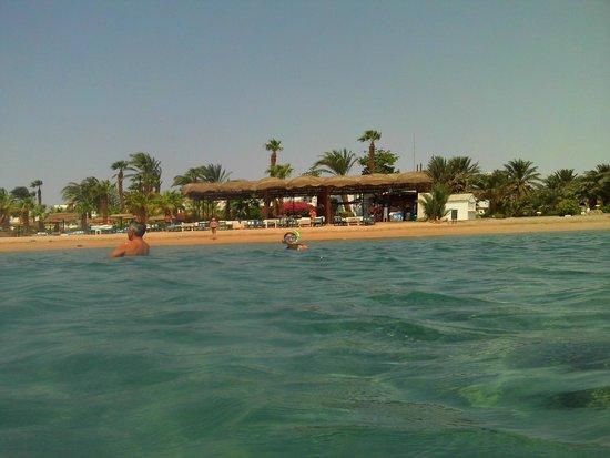 Lotus Bay: Beach (Bar)