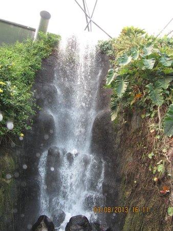 Eden Project: Indoor water falls