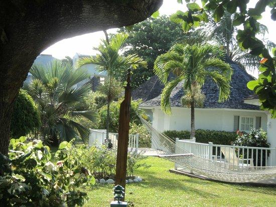 Royal Decameron Club Caribbean : Beautiful manicured grounds