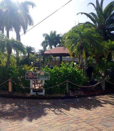 Tropical Beach Resorts: my building