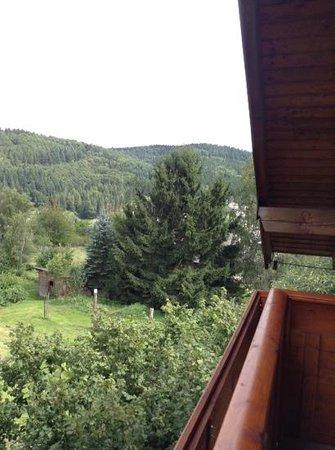 Landhaus Sonnenhof: uitzicht kamer