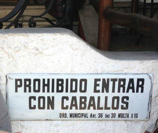Un Toro y Siete Vacas : funny sign