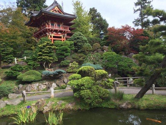 Japanese Tea Garden: Waterfall