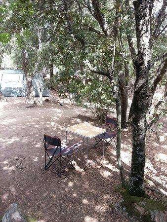 Camping La Vetta : Piazzole