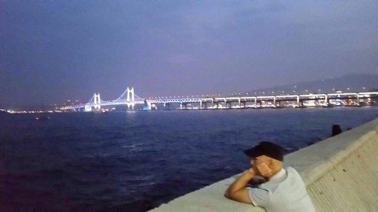 Gwangandaegyo Bridge: Night view