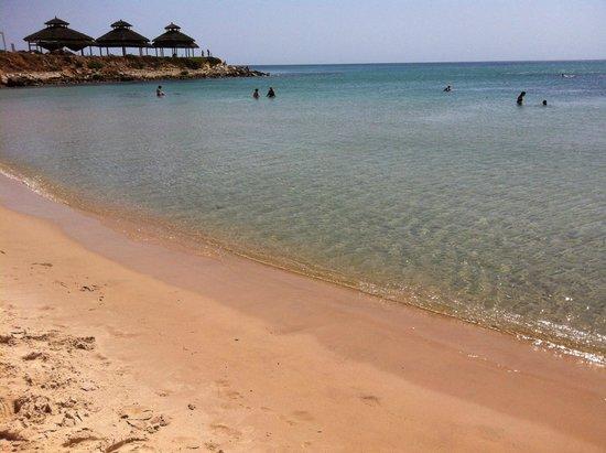 Sol Azur Beach Hotel : the beach