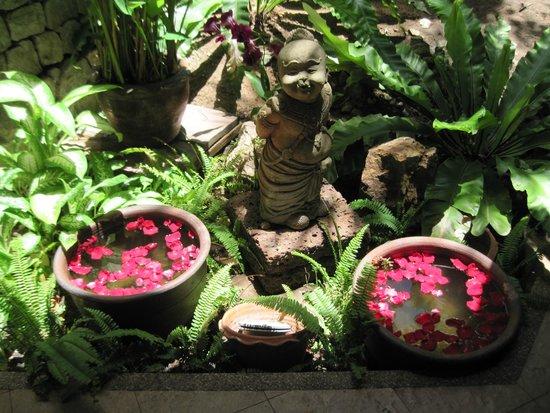 Siam Bayshore: Garden Area