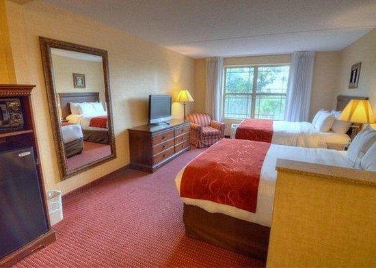 Comfort Suites Lake George: SNQQ