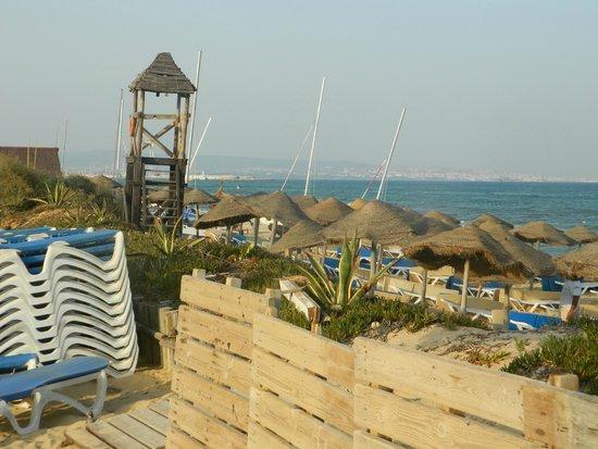 Tui Magic Life Africana : Beach