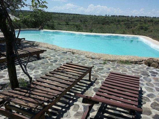Amani Mara Camp: Swimming pool