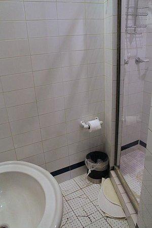 Colonial House Inn : The bathroom (West End Suite)