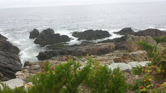 View of rocky coast from Marginal Way