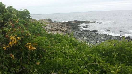 Marginal Way : Another view of the Maine coast from the MW